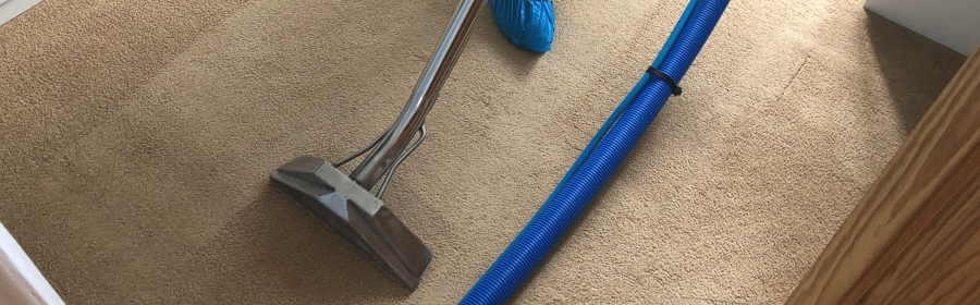 Carpet Cleaning 11