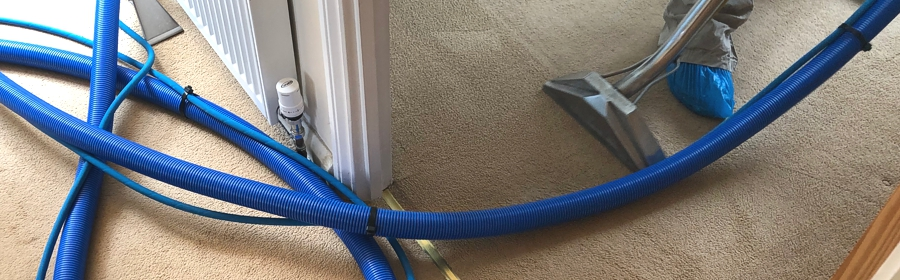 Carpet Cleaning 7